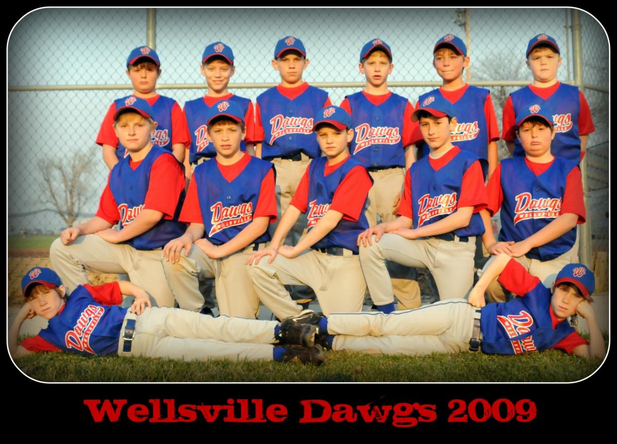 wellsville addison galeton dvd
