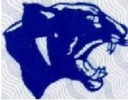 Davie Panthers Logo