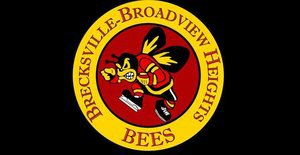 Brecksville-Broadview Heights Bees